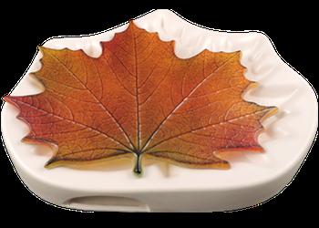 Northwoods Maple